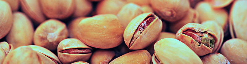 Shell shock! The Pistachio Nut