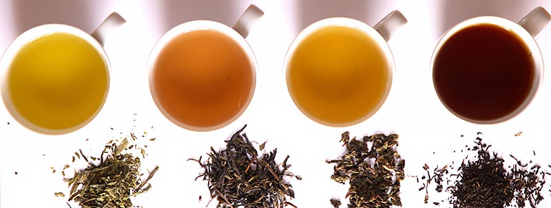 4 cups of tea with different tea leaves