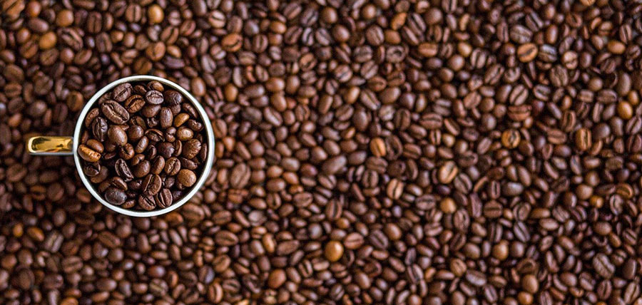 Important Tips To Know Before Making Your Morning Coffee