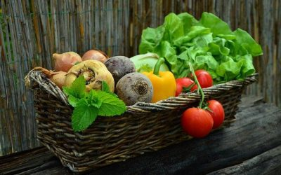 How Can You Grow More Veggies Under Your Roof