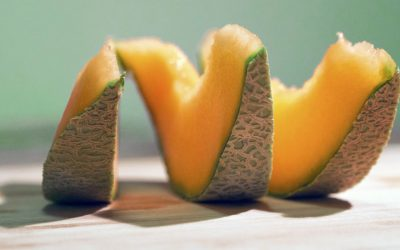 Your Dogs Can Eat Cantaloupe & Here Is Why They Should